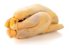 Ruwe kip klaar om worden gekookt royalty-vrije stock foto's