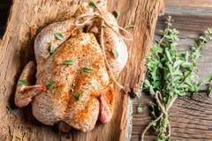 Ruwe kip met kruiden klaar te roosteren stock foto's