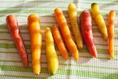 Ruwe kleurrijke wortelgroente Royalty-vrije Stock Afbeelding