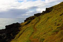 Ruwe kust groene heuvel met weg bij Haven Macquarie Australië Stock Foto's