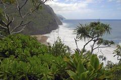 Ruwe Kustlijn en Klippen langs de Kalalau-Sleep van Kauai, Hawaï royalty-vrije stock afbeeldingen