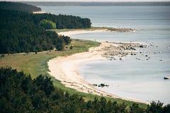 Ruwe kustlijn en naaldbos van Hiiumaa-eiland stock foto