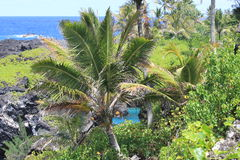 Ruwe kustlijn Hawaï Maui Stock Afbeelding