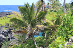 Ruwe kustlijn Hawaï Maui Royalty-vrije Stock Afbeelding