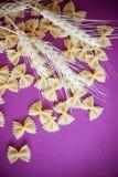 Ruwe macaroni farfalle royalty-vrije stock fotografie