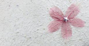 Ruwe mulberydocument textuur Royalty-vrije Stock Fotografie