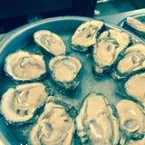Ruwe oesters Royalty-vrije Stock Foto's