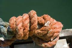 Ruwe oranje kabel vastgebonden knoop Stock Afbeelding