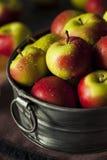Ruwe Organische Dame Apples Royalty-vrije Stock Afbeeldingen