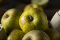 Ruwe Organische Erfgoed Gouden Roodbruine Appelen stock foto's