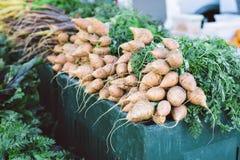 Ruwe Organische Rapen voor Verkoop bij een Landbouwersmarktkraam royalty-vrije stock afbeeldingen