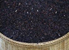 ruwe organische rijst Stock Afbeelding