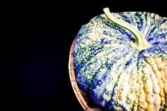 Ruwe pompoenhuid, in de mand Royalty-vrije Stock Afbeeldingen