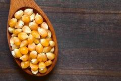 Ruwe Popcornpitten royalty-vrije stock fotografie