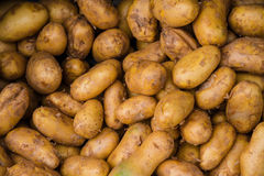 Ruwe potatos in markt Stock Afbeeldingen