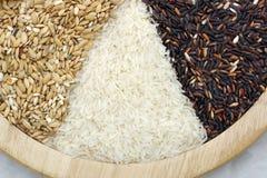 Ruwe rijst Stock Foto's