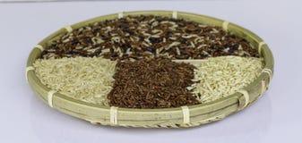 Ruwe rijst, van verschillende soorten rijst Royalty-vrije Stock Foto