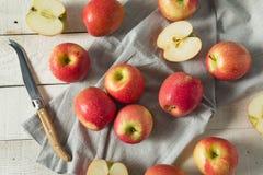 Ruwe Rode Organische Roze Dame Apples Stock Afbeeldingen