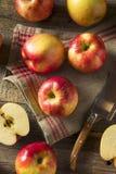 Ruwe Rode Organische Zoete Tango Gala Apples Royalty-vrije Stock Afbeelding