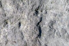 Ruwe rotstextuur stock afbeelding