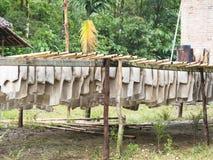 Ruwe rubberbladen die in Myamar drogen Royalty-vrije Stock Foto