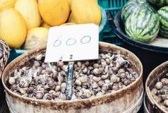 Ruwe slakken levend voor verkoop in de vissenmarkt Pescheria van Catanië, Sicilië, Italië royalty-vrije stock afbeelding