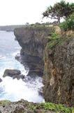 Ruwe Tongaanse Kustlijn stock afbeelding