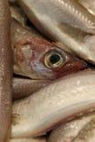 Ruwe verse vissen bij de markt, close-up Stock Foto