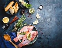 Ruwe vissen en ingrediënten Royalty-vrije Stock Afbeeldingen