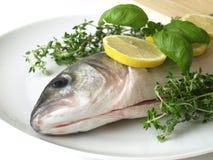 Ruwe vissen met kruiden Stock Foto's