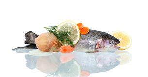 Ruwe Vissen voor Voorbereiding Stock Afbeeldingen