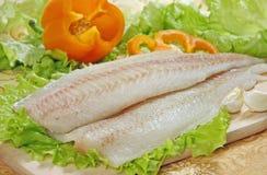 Ruwe vissenfilet royalty-vrije stock fotografie