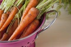 Ruwe wortelen Royalty-vrije Stock Fotografie