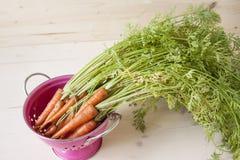 Ruwe wortelen Royalty-vrije Stock Foto's