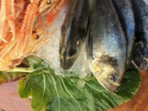 Ruwe Zeevruchten Stock Foto