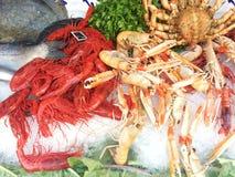 Ruwe Zeevruchten Royalty-vrije Stock Foto