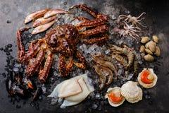 Ruwe Zeevruchten op ijs - Krab, Garnalen, Tweekleppige schelpdieren, Kammosselen, Octopus royalty-vrije stock afbeeldingen