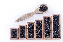 Ruwe zwarte bonen - Statistisch cijfer Phaseolus vulgaris ` Zwarte schildpad Hoogste mening stock afbeeldingen