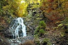 Ruzomberok - Cutkovska Valley, Jamisne watterfall in Cutkovska valley. Ruzomberok - Cutkovska Valley, Jamisne watterfall. Forest, trees, water and autumn leaves royalty free stock image