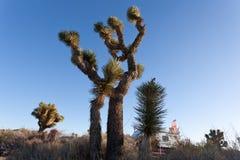 RV camping in Joshua Tree National Park California USA Stock Photography