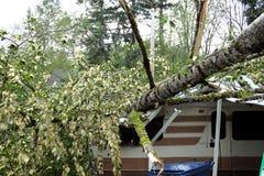 Rv dañó por el árbol que caía Imagen de archivo libre de regalías