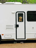 RV Traveler Royalty Free Stock Photos