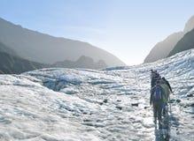 Rävglaciär som trekking, Nya Zeeland Royaltyfri Fotografi