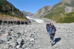 Rävglaciär som trekking, Nya Zeeland Arkivfoton