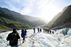 Rävglaciär som trekking, Nya Zeeland Arkivfoto