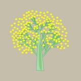 Árvore com flores amarelas Foto de Stock