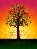 Árvore de Apple na noite Fotografia de Stock