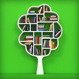 Árvore de conhecimento. Estante no fundo branco. Imagens de Stock Royalty Free