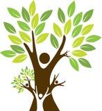 Árvore de família Imagem de Stock