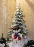 ?rvore de Natal Imagens de Stock